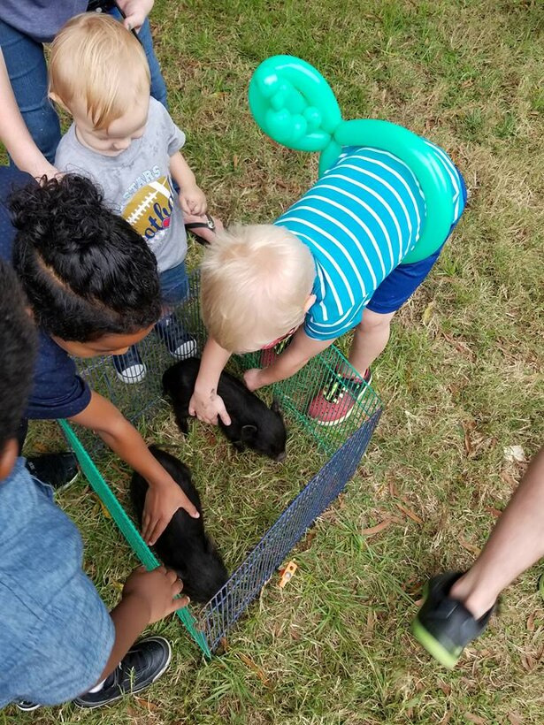 A group of children take turns petting piglets at this year's Family Day Oct. 14, 2017 at Dobbins Air Reserve Base, Ga. Family Day is held here annually as a way of bringing families on base to see what their Reserve Citizen Airmen do on drill weekends. (U.S. Air Force photo/Senior Airman Lauren Douglas)