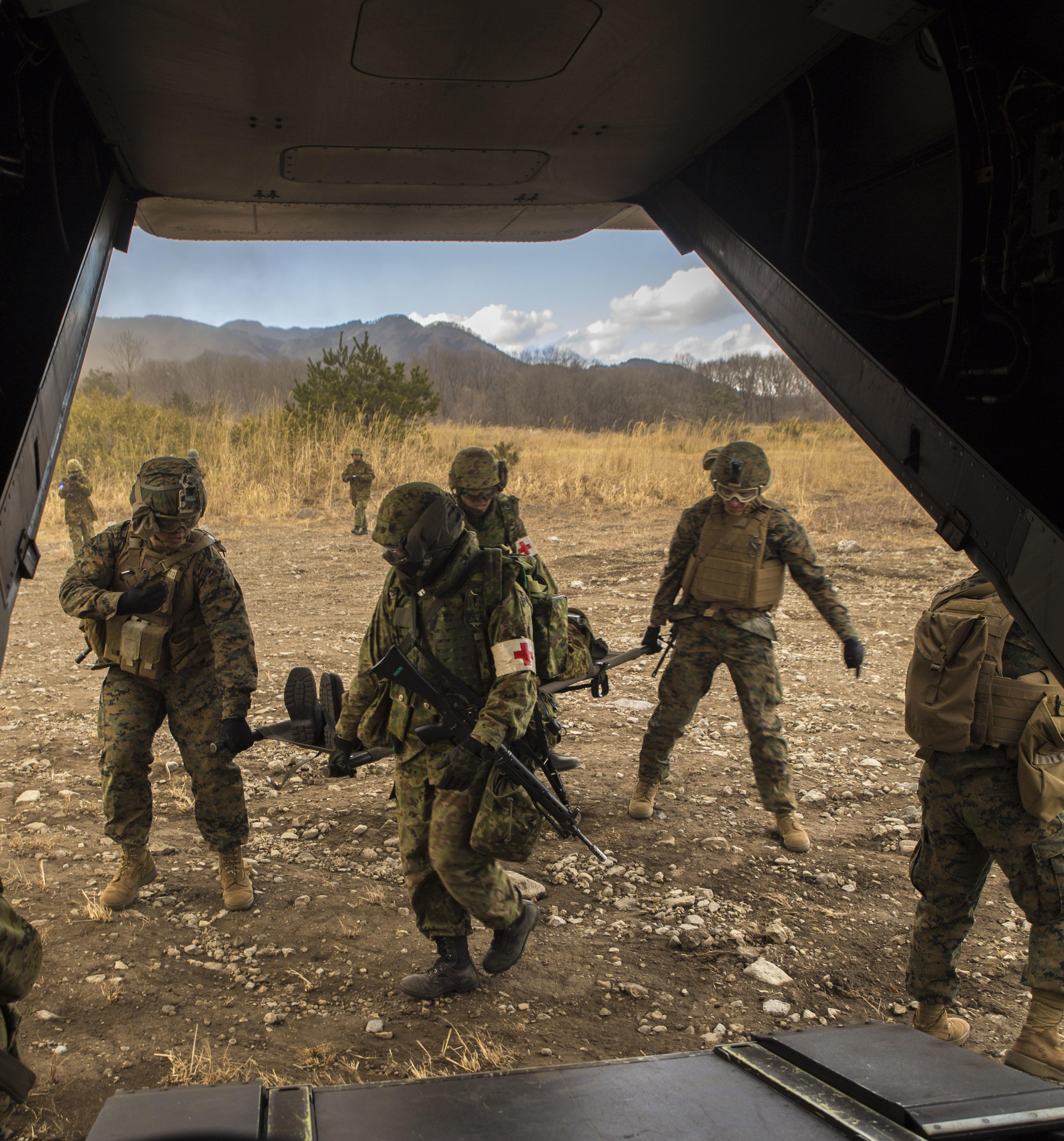 U.S.-Japanese Conduct Aerial Integration Training during Forest Light 17-1