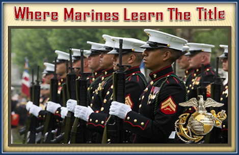 Marines from 6th Marine Regiment