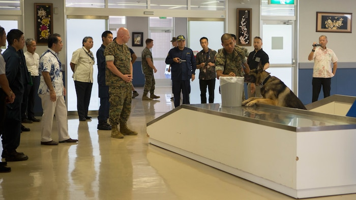 The Okinawa Prefectural Police watches as Cpl. Maximilian Belcaro and Military Working Dog Dak conduct narcotics training.