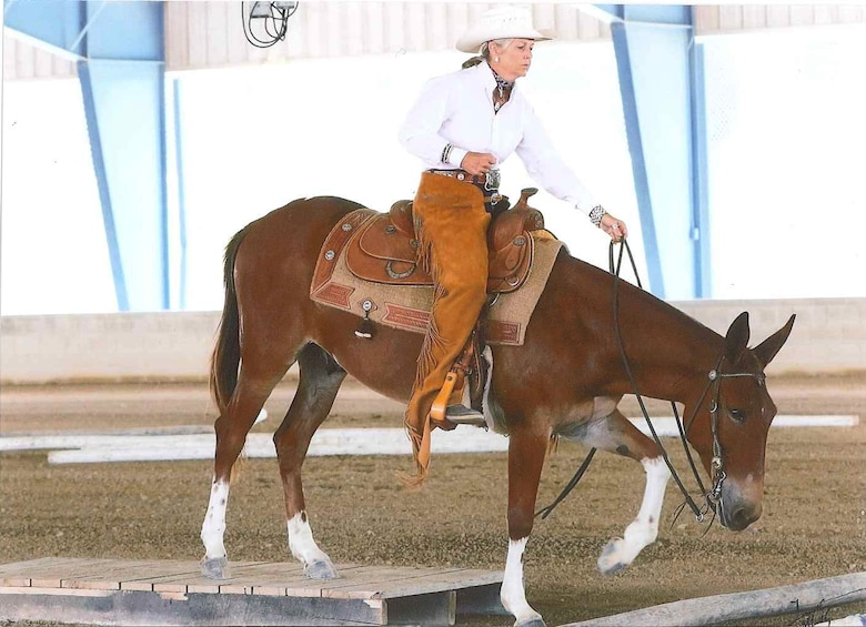Kim Russell, AEDC property specialist, shows off the reining skills of her mule Gus. Russell had shown horses in competitions for many years but later became interested in acquiring a mule. She later found Gus through an ad on Craigslist and has since trained him to become a competition-winning mule. (Courtesy photo/Kim Russell)