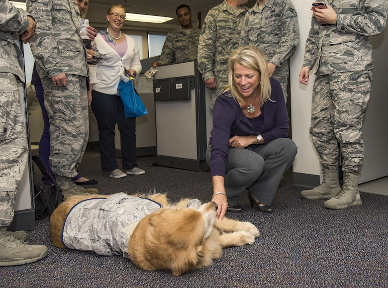 Laura Miller, 436th Comptroller Squadron financial analysis officer, pets Lt. Col. Goldie as he visits Team Dover personnel during Domestic Violence Awareness Month, Oct.19, 2017, on Dover Air Force Base, Del. Goldie is a nine-year-old Golden Retriever therapy dog stationed at Walter Reed National Military Medical Center, Bethesda, Md. (U.S. Air Force photo by Roland Balik)
