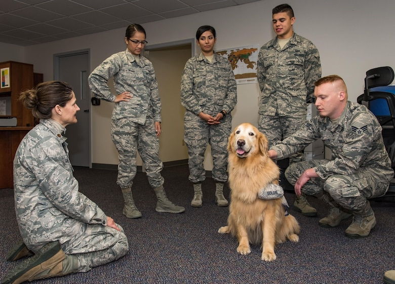 Maj. Regina Owen, 436th Medical Operations Squadron psychiatric mental health nurse practitioner, introduces Lt. Col. Goldie, a nine-year-old Golden Retriever therapy dog stationed at Walter Reed National Military Medical Center, Bethesda, Md., to members of the 436th Comptroller Squadron, Oct. 19, 2017, on Dover Air Force Base, Del. As part of Family Advocacy's outreach during Domestic Violence Awareness Month, Owen escorted Goldie around the base to meet with Team Dover personnel during his temporary duty assignment to Dover. (U.S. Air Force photo by Roland Balik)