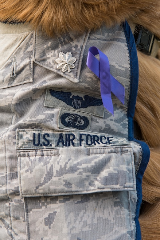 Lt. Col. Goldie wears his custom-made Airman Battle Uniform vest donning silver oak leaf clusters, Oct. 19, 2017, on Dover Air Force Base, Del. Goldie was promoted to his current rank by the Air Force Thunderbirds in September during the 2017 Joint Base Andrews, Md., air show. The purple ribbon worn on his ABU vest is in support of Domestic Violence Awareness Month. (U.S. Air Force photo by Roland Balik)