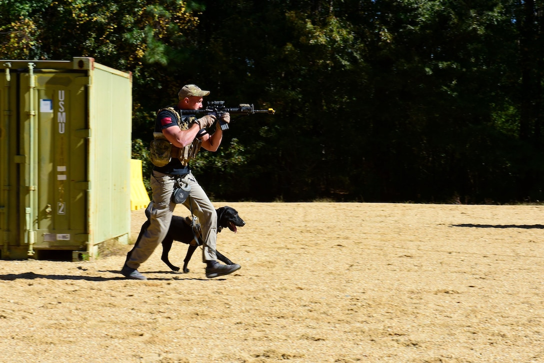 U.S. Marine Corps Cpl. Daniel Barker, 2nd Law Enforcement Battalion military working dog handler, and Marsh, 2nd LEB specialized search dog, engage a simulated threat during the East Coast Iron Dog competition, Oct. 25, 2017, at Seymour Johnson Air Force Base, North Carolina. After engaging the threat with simulated gunfire, the team entered a house and arrested a hostile suspect. (U.S. Air Force photo by Airman 1st Class Kenneth Boyton)
