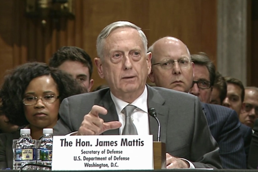 Defense Secretary Jim Mattis speaks while sitting at a table.