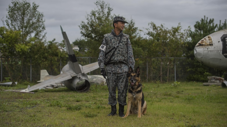 JASDF military working dog