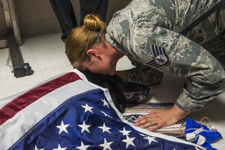 The 375th Security Forces Squadron personnel said goodbye to military working dog Satin N591 Aug. 25, 2017 at Scott Air Force Base, Ill. Satin served two overseas tours in Afghanistan and Qatar. He protected the president of the U.S., important world leaders and the men and women of the U.S. military before battling cancer. (U.S. Air Force photo/Senior Airman Tristin English)