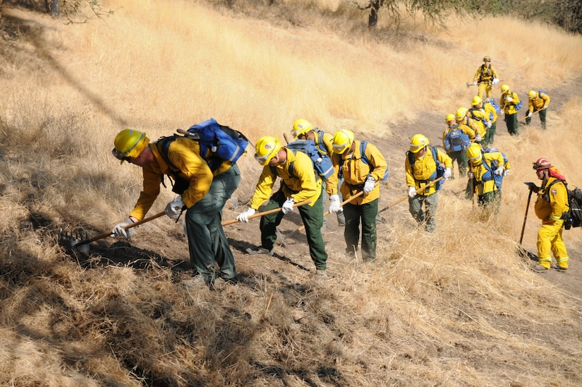 About 350 California National Guard soldiers train at Camp Roberts, California, led by about 50 experienced California Department of Forestry and Fire Protection firefighters. The soldiers were divided into 12 hand crews and were led through six stations where they practiced digging trenches, chopping logs and cutting fire lines with hand tools. California National Guard photo