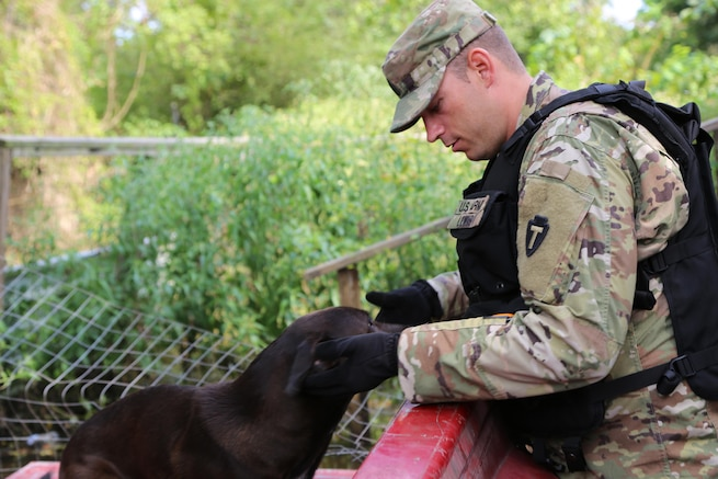A soldier leans over to pet a dog.