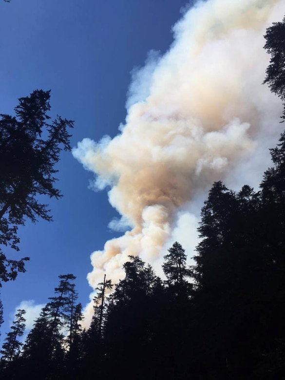A view of the plume shortly after the fire took off on the Eagle Creek Trail in the Columbia River Gorge near Portland, Ore, on Sept. 2, 2017. Helicopters buzzed over heads to dump water on the fire, as around 150 people hunkered down on the Punchbowl Falls rocky beach. Tech. Sgt. Robert Dones, 349th Medical Squadron surgical technician, helped guide the group out of the fire. (U.S. Air Force courtesy photo provided by Sarah Carlin Ames)