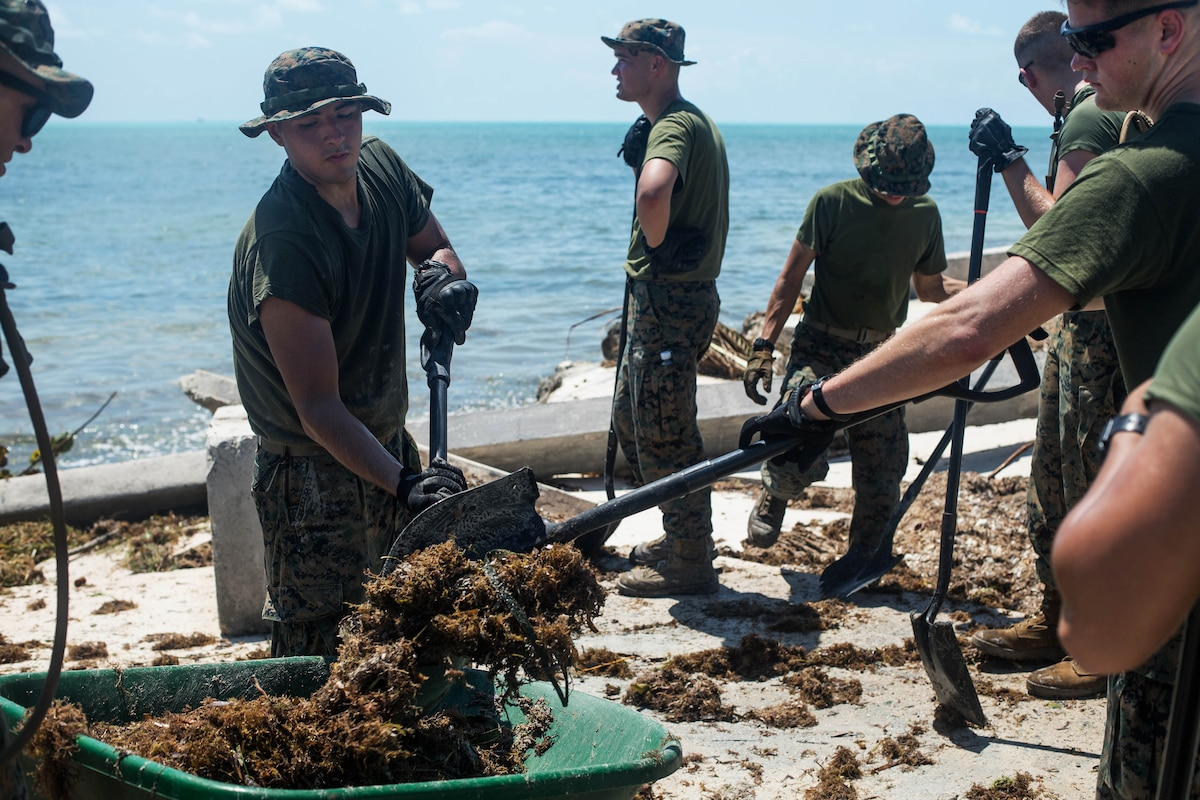 Marines use shovels to clear debris from the streets and beach areas and place it in a wheel barrow.