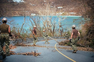 Seabees use shovels to clear away branches and debris.