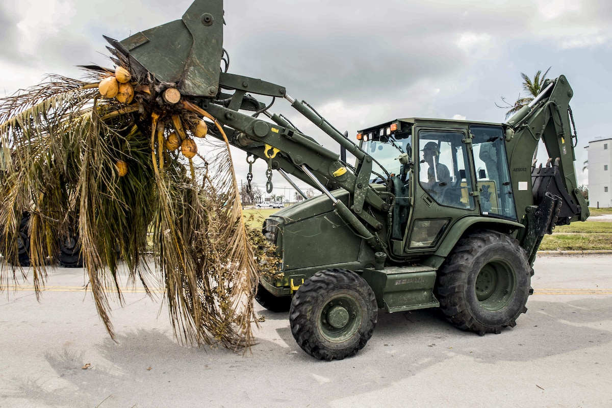 A sailor operates a construction vehicle carrying tropical tree foliage in its shovel.