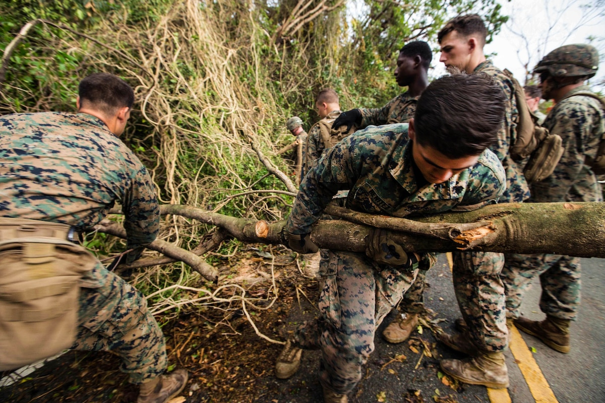 Marine Sgt. David M. Benitez, right, pulls out a tree branch clearing debris from the roadway.