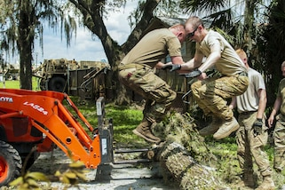 Two soldiers jump on a felled tree trunk.