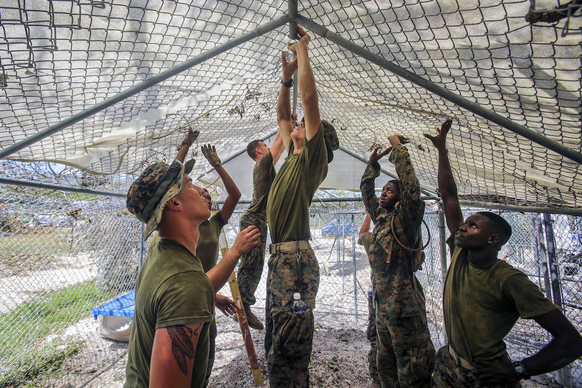 Several Marines hold up a chain link overhead structure in a kennel-type space.