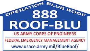 Blue Roof Logo