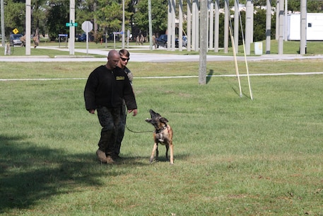 On September 22, 2017 as part of Better Half Day, Military Working Dog (MWD) handlers and their dogs provided demonstrations on:  obedience, explosives detection, tracking, and attack capabilities. A MWD handler and his dog demonstrate an escorting technique where the dog maintains a safe distance from the detained individual while barking.