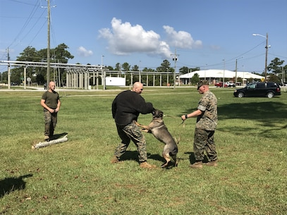 On September 22, 2017 as part of Better Half Day Major Aaron K. Wisherd, Company Commander for Utilities Instruction Company; donned a protective jacket and volunteered for a Military Working Dog demonstration.