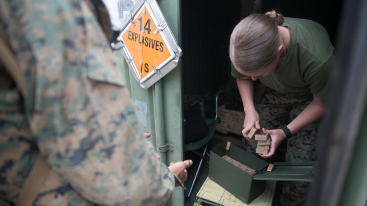 Tracking ammo gets easier: Corps launches innovative information module