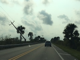 Mobile District water expert Mark Crawford took this photo of power lines in Florida while he was deployed to assist residents with recovery after Hurricane Irma.
