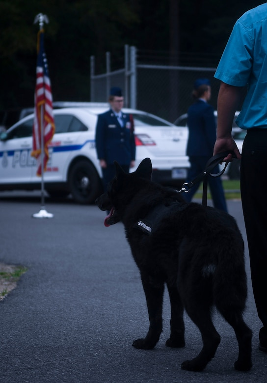 K-9 Airman gone but not forgotten