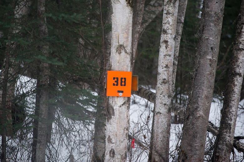 A navigation point is seen on a tree as paratroopers assigned to the 4th Infantry Brigade Combat Team (Airborne), 25th Infantry Division, U.S. Army Alaska, conduct a land navigation course on Joint Base Elmendorf-Richardson, Alaska, April 4, 2018.  The Soldiers used their skills to plot courses using a lensatic compass, protractor, and a 1:25,000 scale map to navigate to, and locate points using provided grid coordinates within a predetermined time.