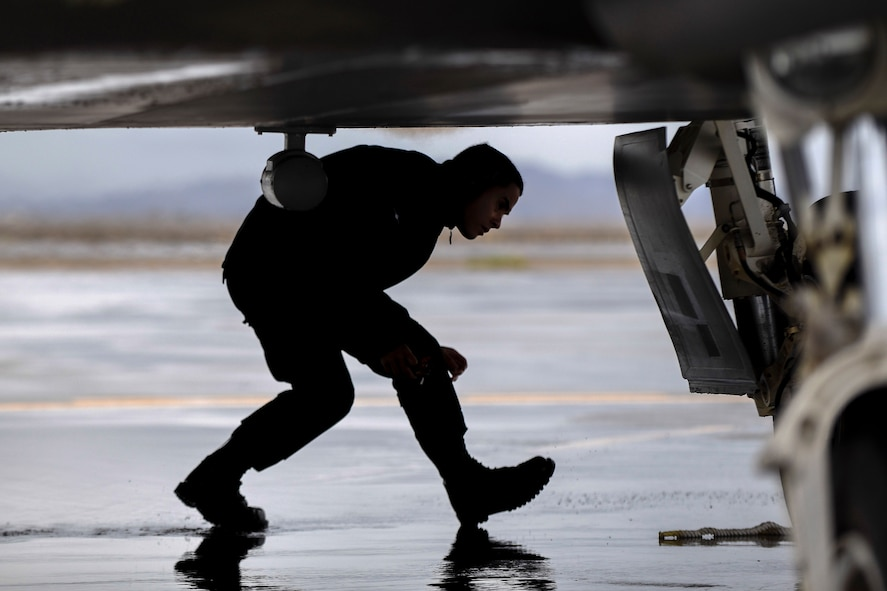 An F-22 Raptor Demonstration Team member inspects the jet after its landing at General William J. Fox Airfield in Lancaster, Calif., March 22, 2018. The F-22s were flown in from Edwards Air Force Base where they landed until the show. (U.S. Air Force photo by Senior Airman Kaylee Dubois)