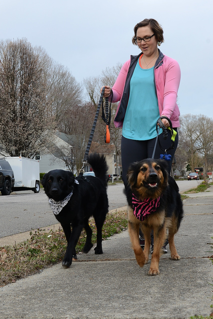 A woman walks two dogs.