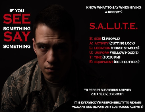 Graphic explains SALUTE, which stands for size, activity, location, uniform, time, and equipment.