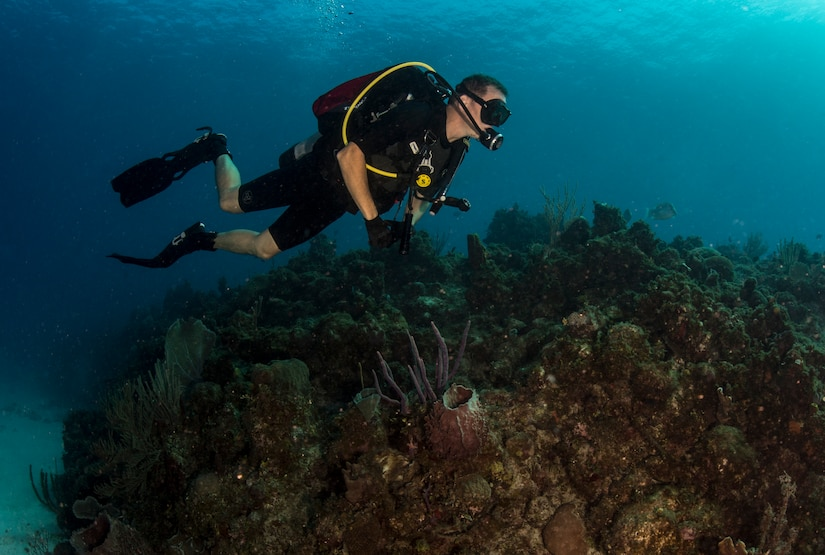 Sailor surveys healthy reef off coast of Guantanamo Bay to assess and compare possible effects of recreational diving on ecosystem, Naval Station