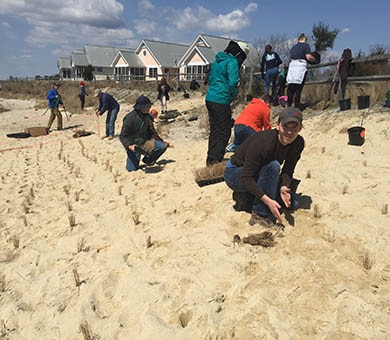 USACE co-hosted an Engineering with Nature workshop April 10-12 in Delaware. Participants conducted a planting demonstration project at Bubblegum Beach on the north side of the Indian River Inlet. Workshop participants planted 1000 herbaceous plants and 40 shrubs and trees.