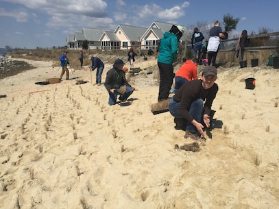 USACE co-hosted an Engineering with Nature workshop April 10-12 in Delaware. Participants conducted a planting demonstration project at Bubblegum Beach on the north side of the Indian River Inlet in Sussex County, DE. Workshop participants planted 1000 herbaceous plants and 40 shrubs and trees.