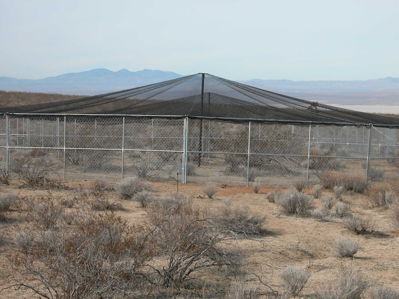 Edwards AFB is hosting the desert tortoise head-start study and providing use of the base's head-start pens to allow San Diego Zoo Global and United States Geological Survey to study the tortoises. The pens are designed to replicate the natural environment of the western Mojave Desert. (Courtesy photo)