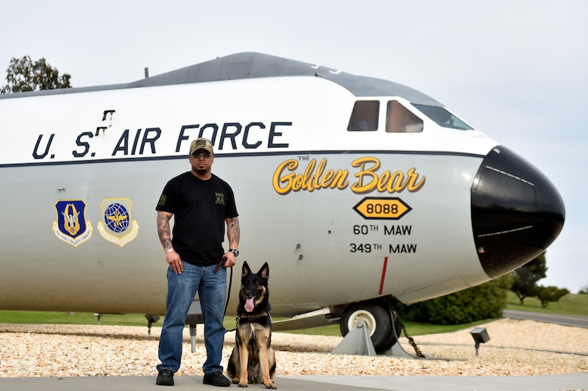 Man and dog stand beside airplane.