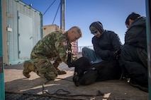 U.S. Army Reserve Lt Commander Eugene Johnson, a veterinary officer with 445th Medical Detachment Veterinary Services, provides care to a local family's pet as part of Innovative Readiness Training Arctic Care 2018, Buckland, Alaska, April 18, 2018.