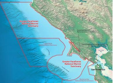 The Farallon Islands, off the coast of San Francisco