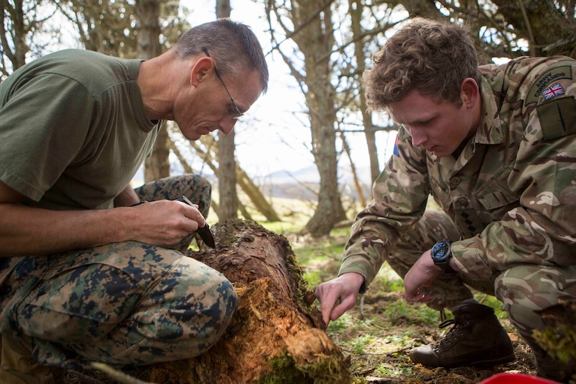 Marines forage for bugs and insects during survival training, in Durness, Scotland.