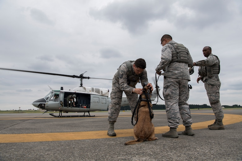 Tech. Sgt. Jordan Gunterman, 374th Security Forces Squadron NCO in charge of the military working dog section, looks over Diesel, 374 SFS MWD, prior to boarding a UH-1N helicopter during a 459th Airlift Squadron MWD familiarization flight July 26, 2018, at Yokota Air Base, Japan.