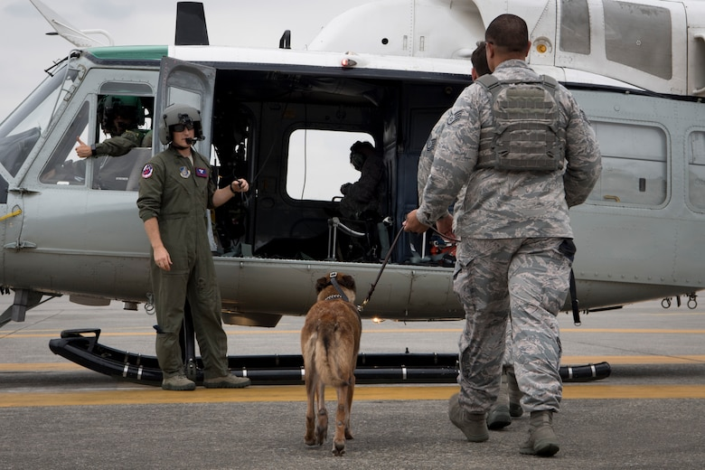 Staff Sgt. Michael Dacoron, 374th Security Forces Squadron military working dog handler, leads Diesel, 374 SFS MWD, onto a UH-1N helicopter during a 459th Airlift Squadron MWD familiarization flight, July 26, 2018, at Yokota Air Base, Japan.