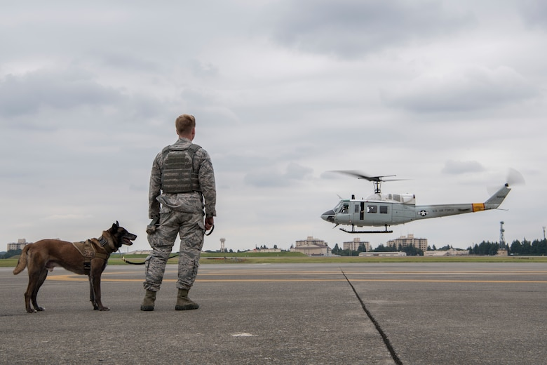 Staff Sgt. Cody Nickell, 374th Security Forces Squadron military working dog handler, watches with Topa, 374 SFS MWD, as a UH-1N helicopter takes off during a 459th Airlift Squadron MWD familiarization flight July 26, 2018, at Yokota Air Base, Japan.