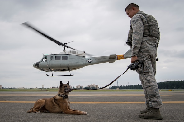 Staff Sgt. Michael Dacoron, 374th Security Forces Squadron military working dog handler, watches with Diesel, 374 SFS MWD, as a UH-1N helicopter takes off during a 459th Airlift Squadron MWD familiarization flight July 26, 2018, at Yokota Air Base, Japan.