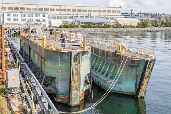 Historic caissons 2 and 3 at Puget Sound Naval Shipyard & Intermediate Maintenance Facility in Bremerton, Wash., in 2018. Two caissons are currently being offered for sale through the Defense Logistics Agency's disposition services.