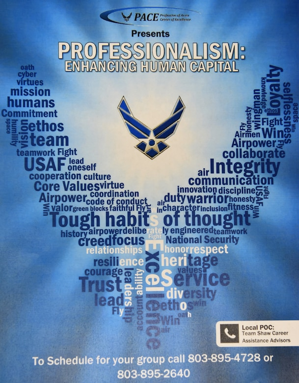 Career assistance advisors (CAA) provide service members with professional development and personalized counseling, and have developed a Commissioning Mentorship Panel allowing enlisted Airmen the opportunity to speak with officers who were once enlisted.