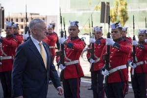 Defense Secretary James N. Mattis walks by Brazilian troops.