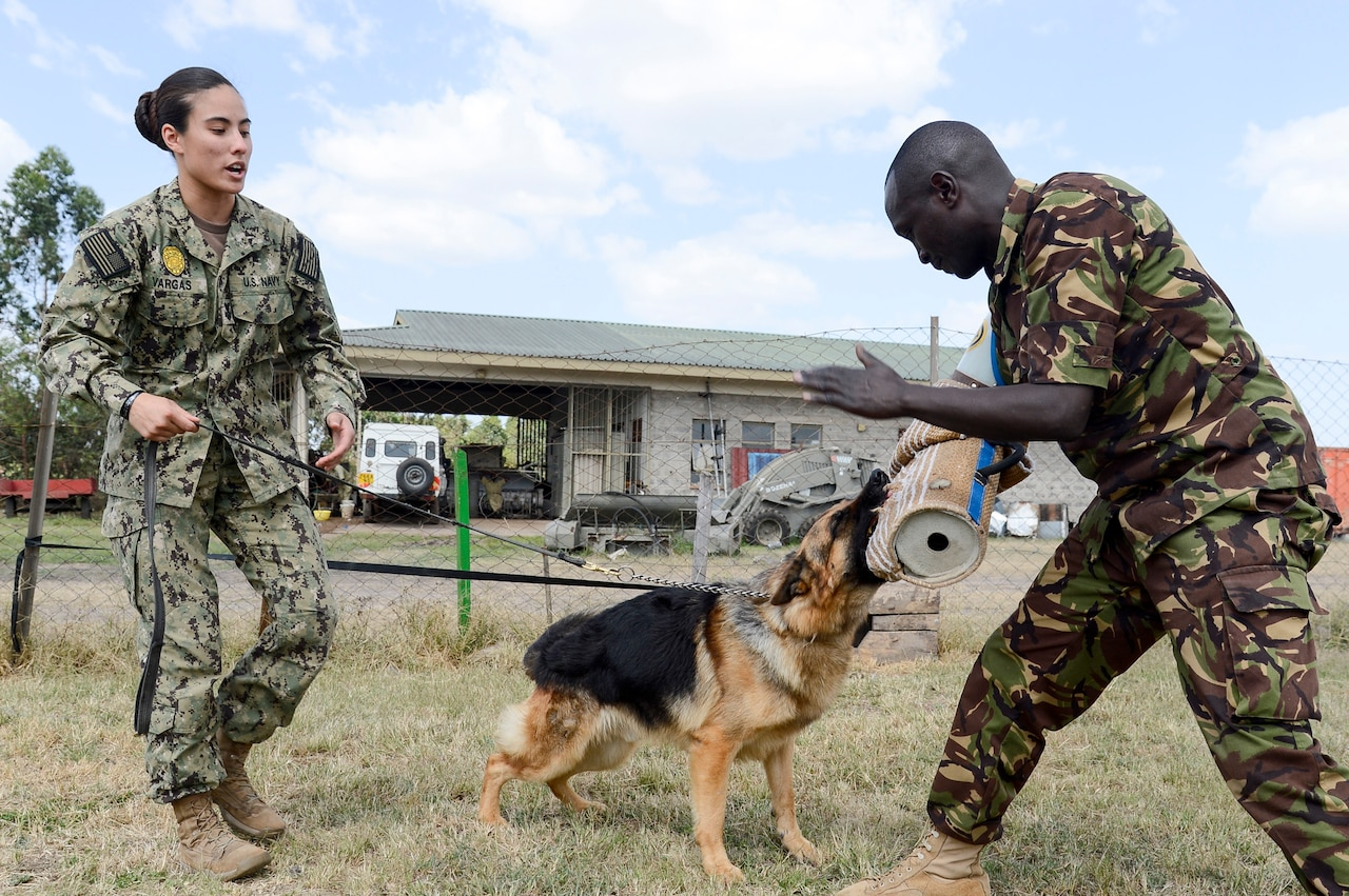 Navy Petty Officer 1st Class Kristina Vargas, a master-at-arms and the Camp Lemonnier, Djibouti, kennel master, and Kenya army Cpl. Junior Kimani, 1st Canine Regiment, conduct controlled aggression training during a military working dog information exchange in Nairobi, Kenya, Aug. 7, 2018. The exchange gave American and Kenyan dog handlers a chance to learn from and work with each other to have a better understanding of each other's capabilities. Navy photo by Petty Officer 2nd Class Timothy M. Ahearn