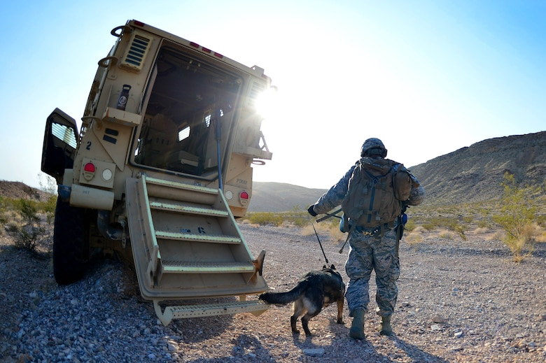 Senior Airman Kannyd, 799th Security Forces Squadron military working dog handler and Csoka, 799th SFS MWD, begin a training exercise Aug. 8, 2018, at Nellis Air Force Base, Nev. These teams are made of a K-9 MWD, their handler and a spotter to ensure the safety of the previous two. (U.S. Air Force Photo by Airman 1st Class Haley Stevens)