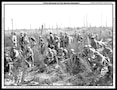 77th Division in the Meuse-Argonne, 15 Oct 1918
