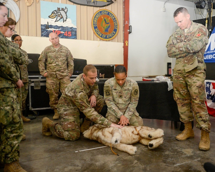 Service members take part in canine casualty care training.